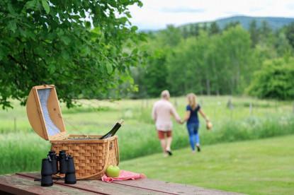 Devonfield, couple on picnic