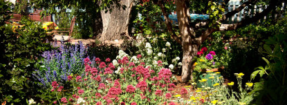 Romantic Madeline Garden