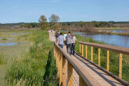 Arcadia Marsh Nature Tour