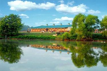 Southern Cross Guest Ranch Bed & Breakfast, Beautiful Surroundings