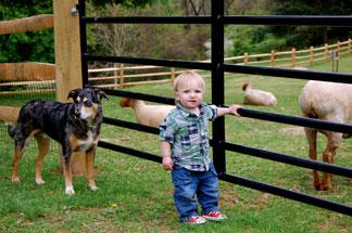Sweetwater Farm-Kid Friendly