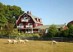 Chanticleer Guest House-Guest Barn