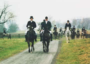 The Black Horse Inn Bed & Breakfast-Warrenton, Virginia