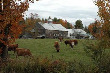 Morrill Farm B&B - Sumner, Maine