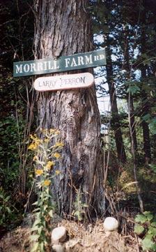 Morrill Farm Bed & Breakfast-Tree