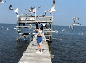 Bay Breeze Bed & Breakfast, Your host, Becky feeding the birds.