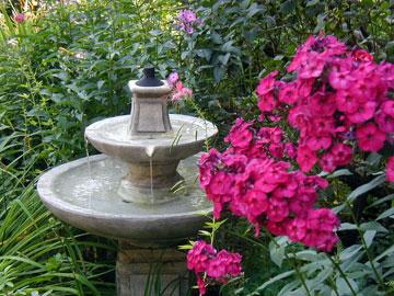 The Morning Glory Inn Phlox and fountain