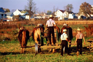 Graystone Cottages-Amish