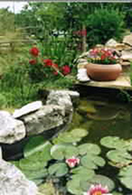 The Hunter Road Stagecoach Stop Bed & Breakfast Lilypond
