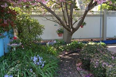 The Harrison Inn, backyard