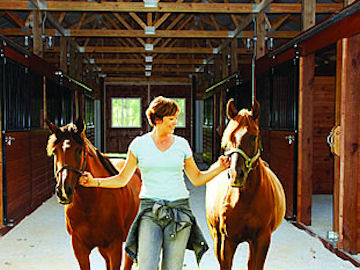 Bluegrass Country Estate horses