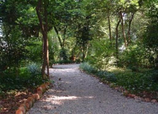 Winding walk through the woodland garden at Breeden Inn.
