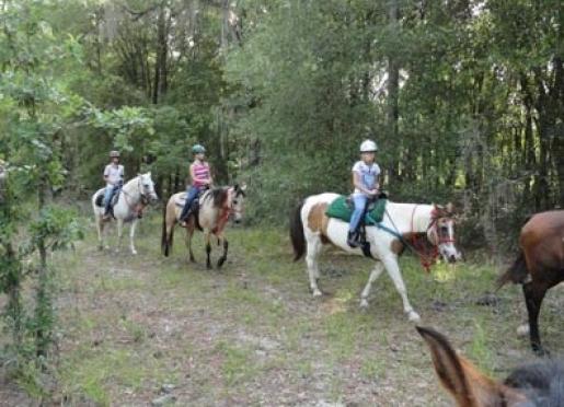 We offer horseback trail rides.