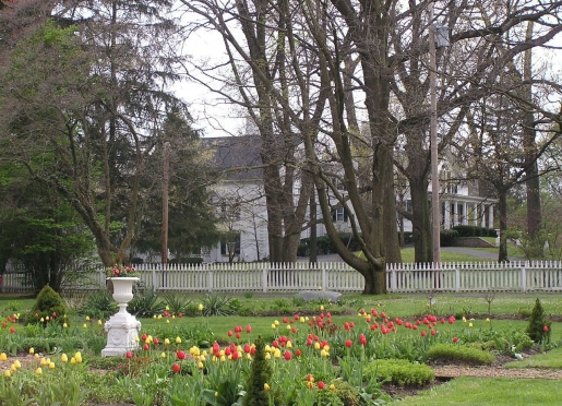 Early spring tulips in center gardens with 1830's estate in background.