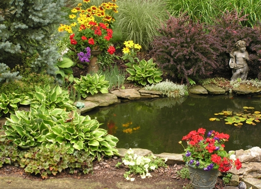 Colorful landscaped pond with a few fish and yes frogs too.