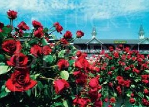 Plan to attend Churchill Downs/Kentucky Derby or Keeneland Race Track