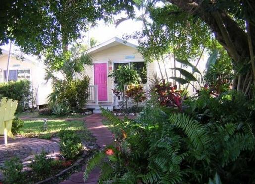 Garden area ( villa #7 )