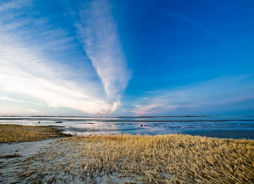 The beaches are minutes away. This is Barnstable Harbor, just up the road!