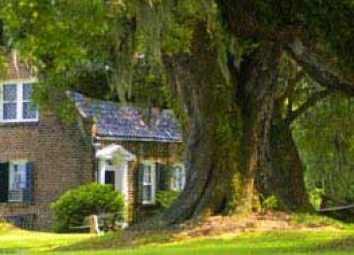 Mansfield Plantation B&B - Georgetown, South Carolina