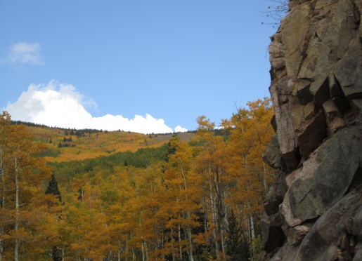 Natural beauty abound in the Sangre de Cristos- 16 mile drive from Pueblo Bonito b&b.