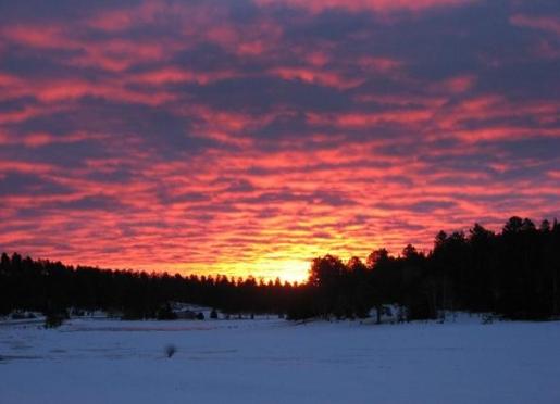 Sunrise at Normarke Farm