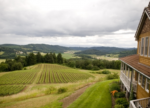 Oregon's premier wine country experience.