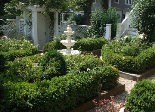 Boxwood Parterre garden features English boxwoods and roses.