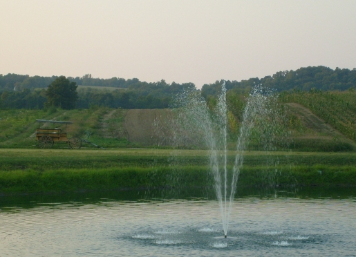 Relax to the falling sound of water from our fountain on our stocked pond