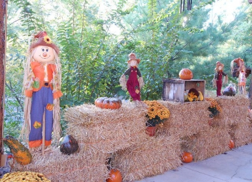 Fall Decorations at White River Lodge carport.