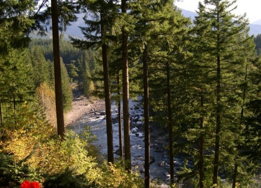 Situated on 3.23 Acres on the Middle Fork of the Snoqualmie River