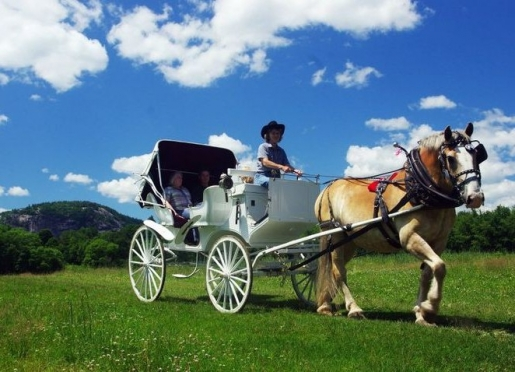 Carriage sleigh ofr horseback ride included in package