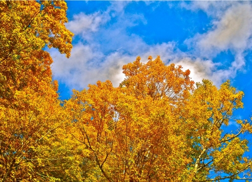 Blue skies and colorful foliage make October a great time to come visit the mountains.