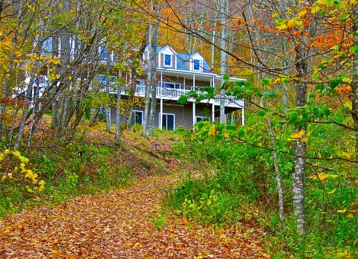 Colorful Fall Leaves at Bald Mountain House