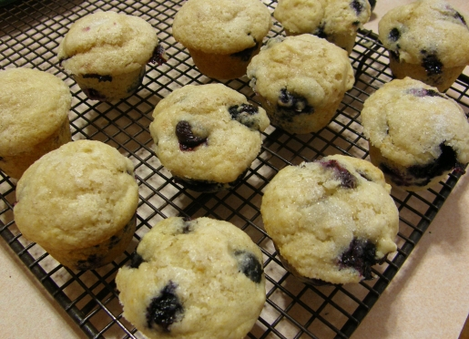 Homemade mini muffins with fresh local blueberries