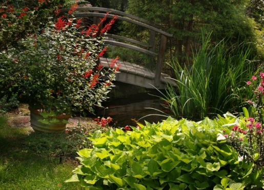 Colorful Garden Palette