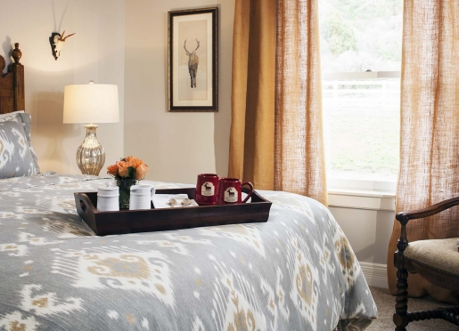 Hermosa Creek Guestroom at Antler's on the Creek