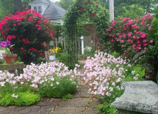 Seasonal Gardens